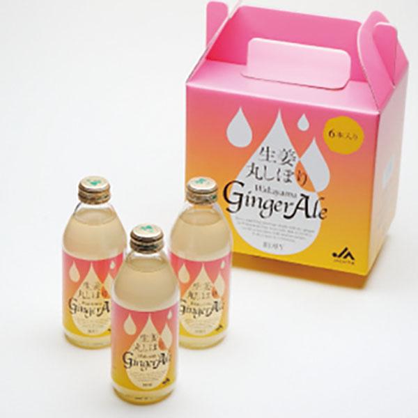 写真:生姜丸しぼり Wakayama Ginger Ale