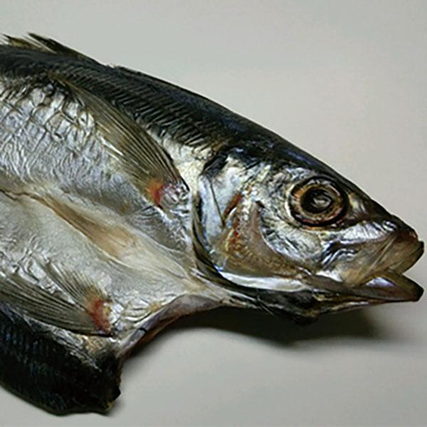 写真:紀州ゆあさ魚義 梅塩の干物 真アジの開き