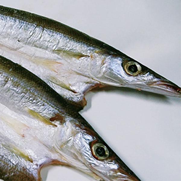 写真:紀州ゆあさ魚義 梅塩の干物 カマスの開き