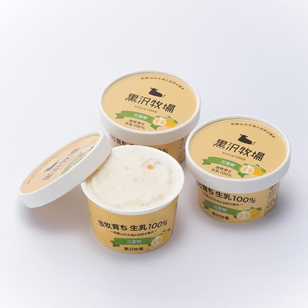 写真:黒沢牧場 三宝柑アイスクリーム