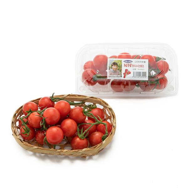 写真:房付きミニトマト