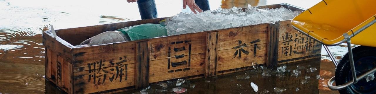 木下水産の木箱