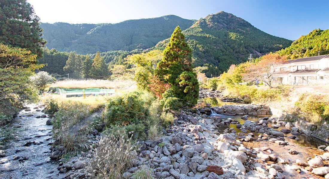 写真:近大独自の養殖技術と、和歌山の清流が作り出す「近大キャビア」